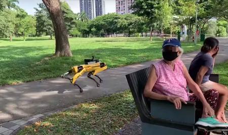 Robot quadrúpede utilitzat a Singapur durant la pandèmia de COVID-19, per controlar la distància de seguretat entre ciutadans.